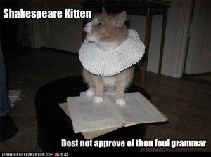 funny-pictures-cat-hates-your-grammar