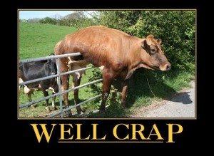 WELL-CRAP