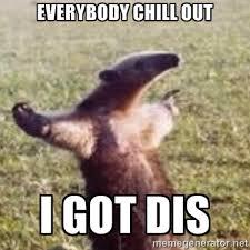 anteater-got-this