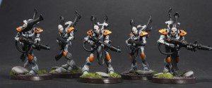 wraith-guard