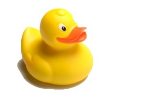 sponsor-a-duck