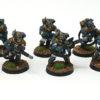 Blue scouts 1